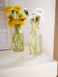 Themenwoche: Vom Löwenzahn zur Pusteblume (inkl. Download) - Montessori Blog & Shop - MontiMinis Botany, Glass Vase, Blog, Flowers, Plants, Material, Decor, Dandelion Nursery, Montessori Toddler