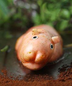 hippopopotato