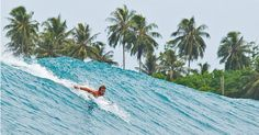 Travel and surf for free! Want in?  www.surf-swap.com