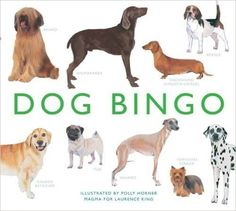It's bingo- with dogs instead of numbers! This beautifully illustrated bingo game features 64 breeds of dog from around the world. Spot all kinds of dogs – from the tiny Chihuahua to the noble Great Dane, from the sleek Saluki to the dreadlocked Hungarian Kinds Of Dogs, All Dogs, Chinese Crested Dog, Wire Fox Terrier, Bingo Cards, Weimaraner, Dachshund Dog, Whippet, Yorkshire Terrier