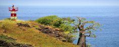 Küsten-Impressionen auf einer unserer Sao Tomé und Principé Gruppenreisen.