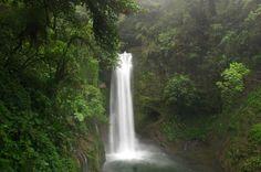 la paz waterfall   - Costa Rica