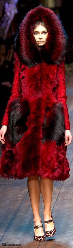 Dolce & Gabbana Fall 2014 RTW                                                                                                                                                                                 More