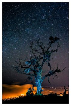 Estrellas sobre Cartago by Gustavo Valle, via Flickr