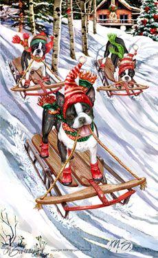 Boston Terrier - Boston Hill - by Margaret Sweeney