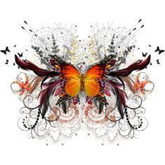"""""""Orange Butterfly"""""""