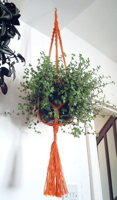 Macramé plant hanger, free tutorial Macrame Tutorial, Plant Hanger, Weaving, Hangers, Plants, Diy, House, Home Decor, Free