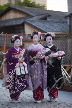 Oiran & Geisha : Photo
