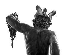 Benvenuto Cellini was an Italian artist born in Florence, He is known for his art-pieces as well as his Autobiography consisting tall-tales. Perseus Und Medusa, Sculptures, Lion Sculpture, Fiction Novels, Italian Artist, Greek Mythology, Firenze, Artwork, Verify