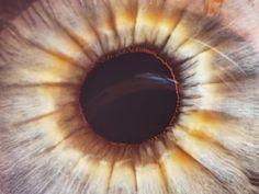 Fotografie lidského oka - Jakub Štěpán PHOTOGRAPHY Photography, Photograph, Fotografie, Photoshoot, Fotografia