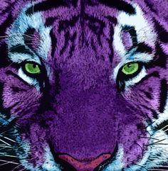 purple tiger -Sarah- In love with this pic Purple Love, Purple Lilac, All Things Purple, Shades Of Purple, Deep Purple, Purple Stuff, Purple Art, Purple Animals, Tiger Art