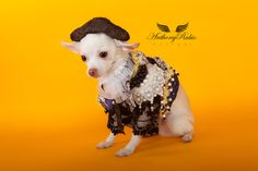 Anthony Rubio, Matador Costumes for Dogs, Dog Fashion, Trajes De Luces. --- Photo by Yoni Levy. ---- www.AnthonyRubioDesigns.com  ---------  www.Instagram.com/AnthonyRubio01 -------------- #AnthonyRubio --- #Matador ----- Halloween Costume For Dogs