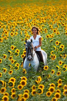 Horse Riding In Sunflower Field. ... Re-pinned by StoneArtUSA.com ~ affordable custom pet memorials since 2001