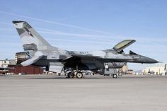 900947_F-16AFightingFalcon_USNavy NSAWC _KNFL