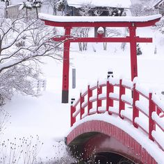 Torii gate in winter. (黒ネコ) I want to make a small Japanese red bridge and gate like this in my landscaping and garden. Dojo, Japanese Christmas, Japon Tokyo, Torii Gate, Double Picture, Sister Cities, Yamaguchi, Japanese Beauty, Asian Beauty