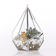 Modern Artistic Tears Shape Diamond 3MM Thick Clear Glass Geometric Polyhedron Terrarium Hanging Air Planter(5-face triangle with 6-face pentagons) 11.43x11.43x13.46 cm (13.97 cm with loop) Silver: Amazon.co.uk: Garden & Outdoors