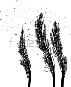 black and white illustration of tree poplars in the wind Stock Vector