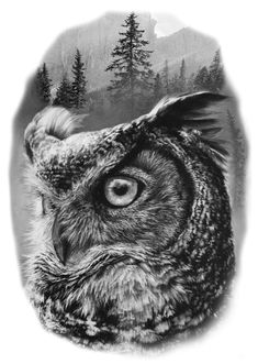 39 Ideas for tattoo designs skull birds Bear Tattoos, Wolf Tattoos, Lion Tattoo, Animal Tattoos, Body Art Tattoos, Sleeve Tattoos, Owl Tattoo Design, Tattoo Designs, Tatto Skull