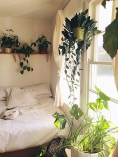 simple white bedroom with lots of greenery