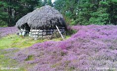 This is a shieling, a hut once common in a wild or lonely place in the hills and mountains of Scotland. This shieling is at the Highland Folk Museum. More at www.naturalhomes.org/timeline/shieling.htm