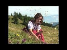 Musikanten Polka - YouTube