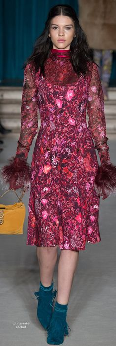 Matthew Williamson Fall 2015