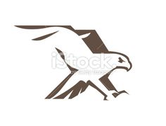 Hawk or Eagle Royalty Free Stock Vector Art Illustration