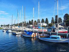 #PortFairyPics #portfairy #australia #aussiephotos #AUSTRALIA_OZ #australiagram #amazing_australia #boat #exploreaustralia #exploringaustralia #fish #fishing #greatoceanroad #great_captures_australia #icu_aussies #ig_captures #igworldclub #ig_australia #liveinvictoria #river #seeaustralia #sail #sailing #travel  #visitvictoria #wow_australia #yacht #jetty #icu_aussies by portfairypics