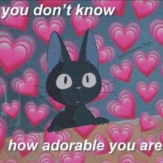 Wholesome Pictures, Cute Love Memes, Snapchat Stickers, Crush Memes, Funny Reaction Pictures, Cute Messages, Lovey Dovey, Relationship Memes, Wholesome Memes