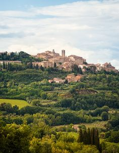 Montepulciano (Tuscany, Italy) is a medieval and Renaissance hill town and…