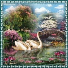 Swan Lake. Swan Pictures, Bird Pictures, Wall Art Pictures, Pictures To Paint, Beautiful Pictures, Beautiful Fairies, Beautiful Birds, Swans, Swan Painting