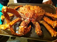 The king of crabs Big Crab, Alaskan King Crab, Crab Dishes, Pretty Good, Food Photo, Chicken Wings, Singapore, Stuffed Peppers, Spaces