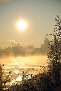 Beautiful winter morning at the river Elbe, Dresden, Germany