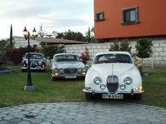 Clásicos de Lujo   Renta de autos clásicos y de lujo