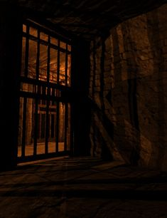 (Public Rp anyone can join in) I woke up in this dungeon without my ice and snow powers. I feel very week and I can't stand up, but I see my dog Olaf in the cell across from me. Please help me get out!!!!! *shouts* is anyone in here!?!