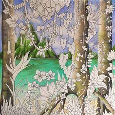 Johanna Basfords Magical Jungle