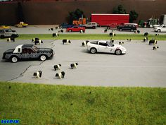 Love the addition of animals in this photo - wonder if I can source some 1/64 scale farm animals too!