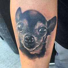 #tattoo #tattoos #ink #chihuahua #dog #portrait #blackandgrey #realism #realistic #photorealism #imperialbodyart #imperial #boise #meridian #idaho