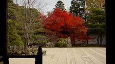 The Nantei garden seen from the side of the Shinden hall in Ninna-ji temple in Kyoto.