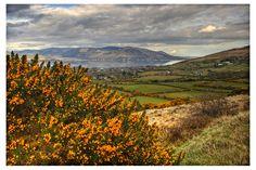 #Ireland 58 by aniabeata