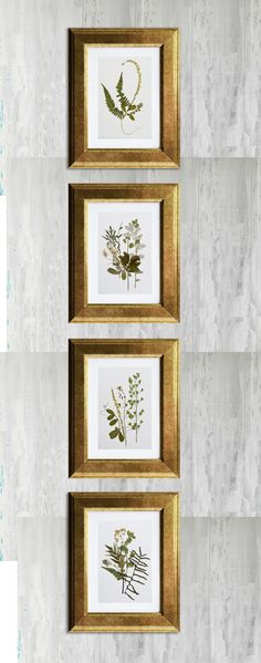 Pressed flowers set framed in gold #pressedflowers #gold #plants #driedflowers #leaves #flowers #green #plants