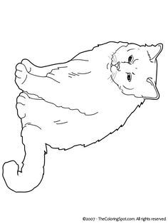 Cats Coloring Pages Birman.
