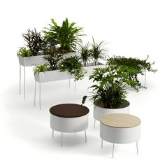 Improving Office Life With Chic Furniture That Integrates Plants - InteriorZine