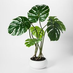 Faux Palm Leaf Plant in White Pot Large - Project 62 , Green Big Indoor Plants, Small Artificial Plants, Artificial Plant Wall, Artificial Turf, Artificial Flowers, Go Green, Console, Pots, Bathroom Plants