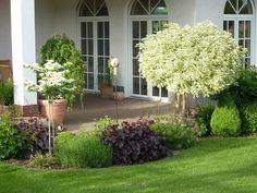 """Eure Gartenbilder, Beete, Gestaltungsideen """"Traumsommer 2013"""" - Seite 102 - Gartengestaltung - Mein schöner Garten online"""
