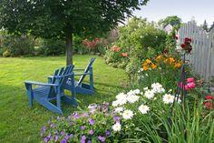 backyard-garden jardim