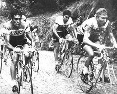 ......Luis Ocana & Merckx on the cobbles!