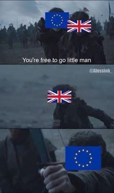 Game of Thrones funny meme. Brexit