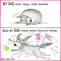 My Dog / Also My Dog - Funny Dog Quotes - redandhowling_MyDogP.jpg The post My Dog / Also My Dog appeared first on Gag Dad. Funny Dog Memes, Funny Dogs, Funny Animals, Animals Dog, I Love Dogs, Puppy Love, Cute Dogs, Cartoon Dog, Dog Cartoons