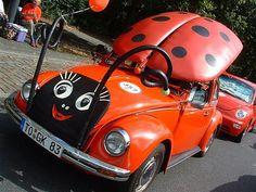Les presento a LadyBug.... (Vocho catarina)